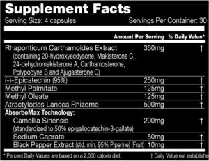 MASSsuppfacts-300x231.png