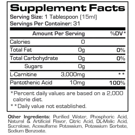 l-carnitine-3000-31-servings-berry-usa_1.jpg